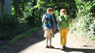 Das WaldHaus in Freiburg ist ein Umweltbildungsort nicht nur für Kinder