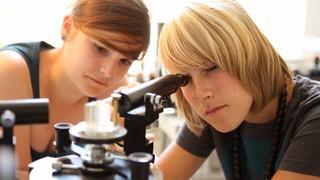 Zusammen mit der FWTM veranstaltet die Uni Freiburg den Wissenschaftsmarkt und bietet Forschung zum Anfassen und Mitmachen.